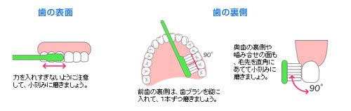 予防歯科/スクラッビング法